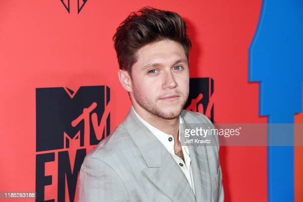 Niall Horan attends the MTV EMAs 2019 at FIBES Conference and Exhibition Centre on November 03 2019 in Seville Spain