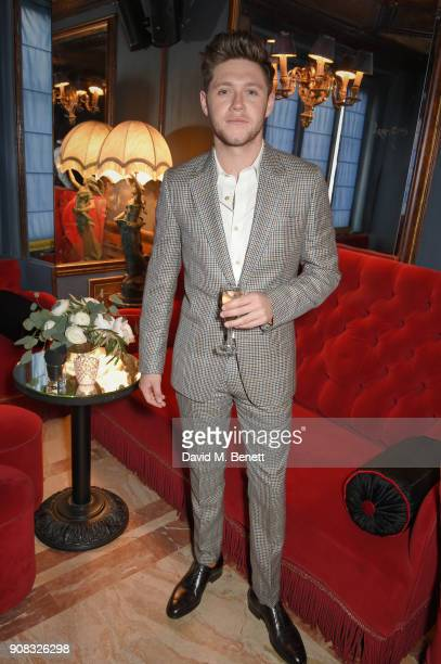Niall Horan waering Paul SMith attends the Paul Smith Malgosia Bela AW18 Lunch on January 21 2018 in Paris France