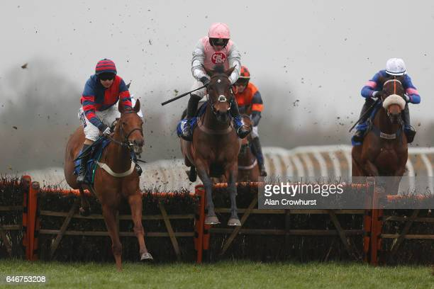 Niall Madden riding Tangley on their way to winning The Lycetts Bloodstock Insurance Mares' Novices' Hurdle Race at Wincanton Racecourse on March 1...