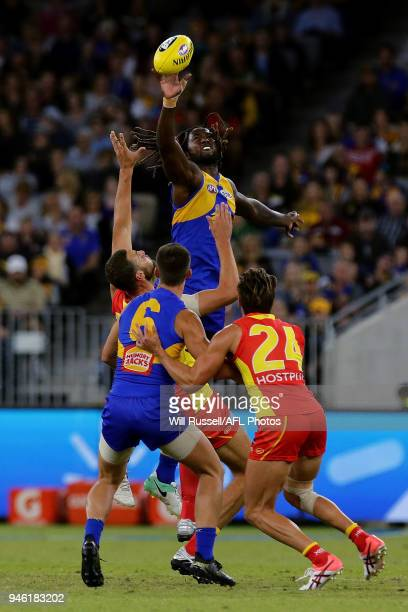 Nic Naitanui of the Eagles contests a ruck with Jarrod Witts of the Suns during the round four AFL match between the West Coast Eagles and the Gold...