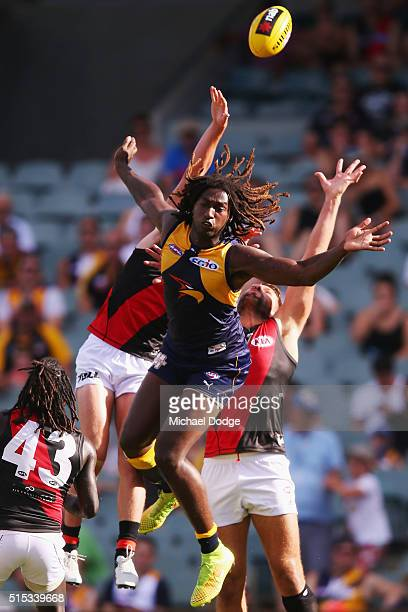 Nic Naitanui of the Eagles is infringed by Mark Jamar of the Bombers during the NAB Challenge AFL match between the West Coast Eagles and the...