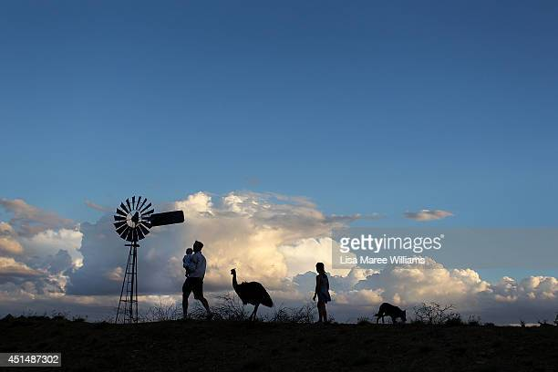 Nic Walker holds his son Tasman as he walks with Carley Walker and 'Stan' the emu at their property 'Rio Station' on March 18 2014 in Longreach...