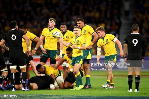 Nic White of the Wallabies prepares to feed a scrum during the 2019 Rugby Championship Test Match between the Australian Wallabies and the New...