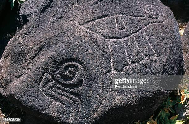 Nicaragua, Lake Nicaragua, Ometepe Island, Close up detail of petroglyphs carved in to large bolder.