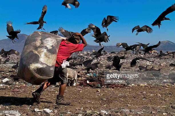 Nicaraguan boy carries a large bag of trash for recycling while fighting with flying vultures in the garbage dump La Chureca on 10 November 2004 in...