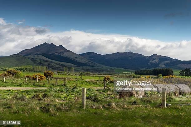 Nice farmland scenery during the journey near Te Anau