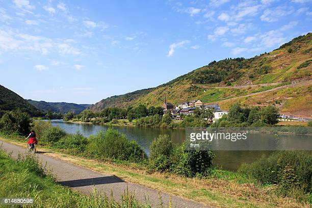 nice landscape with cyclist on bike path near moselle river/ rhineland-palatinate, germany - moselle stock pictures, royalty-free photos & images