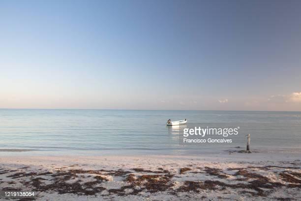 nice sea view in amazing holbox island, mexico - isla holbox fotografías e imágenes de stock