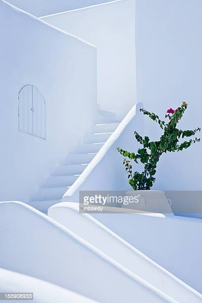 nice white stairs in oia village, santorini island - greek culture stock pictures, royalty-free photos & images