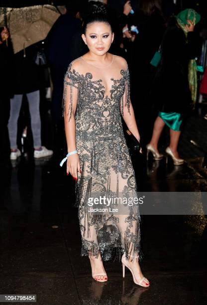 Nichapat Suphap is seen at amFAR gala on February 6 2019 in New York City