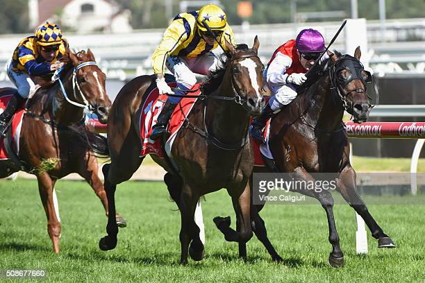Nicholas Hall riding Puritan defeats Mark Zahra riding Golden Spin in Race 8 the Manfred Stakes during Melbourne Racing at Caulfield Racecourse on...