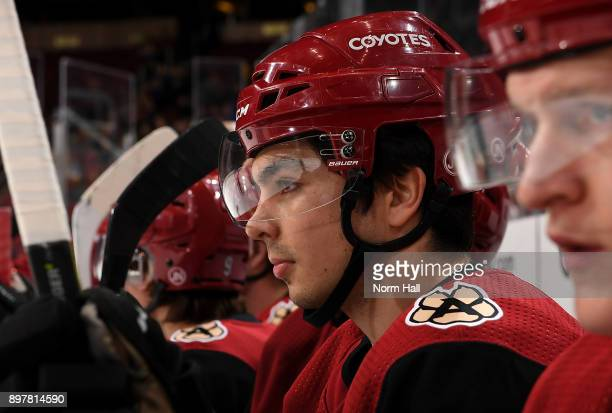 Nicholas Merkley of the Arizona Coyotes looks on from the bench against the Florida Panthers at Gila River Arena on December 19 2017 in Glendale...