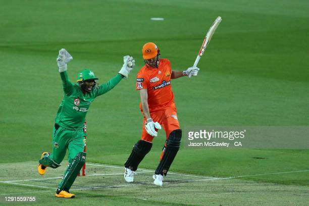 Nicholas Pooran of the Stars celebrates after catching Ashton Turner of the Scorchers of during the Big Bash League match between the Perth Scorchers...