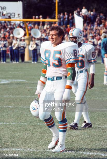 Nick Buoniconti of the Miami Dolphins looks on during an NFL football game circa 1972 Buoniconti played for the Dolphins from 19691976