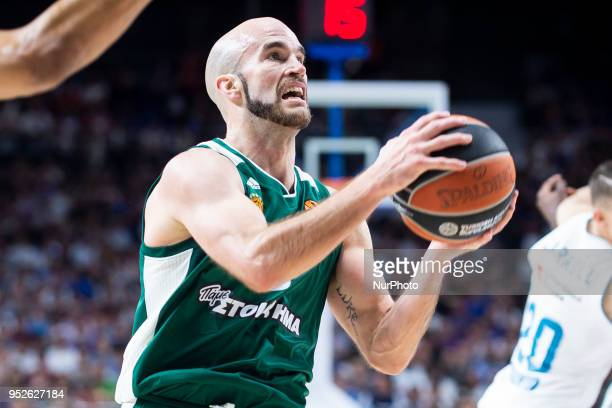Nick Calathes of Panathinaikos Superfoods Athens in action during the Turkish Airlines Euroleague Play Offs Game 4 between Real Madrid v...