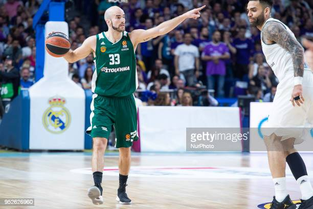 Nick Calathes of Panathinaikos Superfoods in action during the Turkish Airlines Euroleague Play Offs Game 4 between Real Madrid v Panathinaikos...
