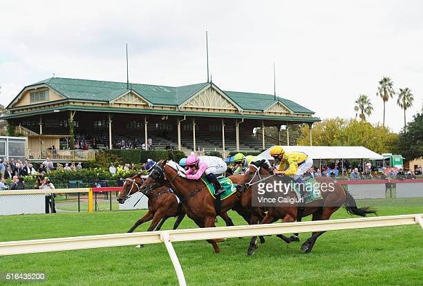 Nick Hall riding Manhattan Blues wins Race 3 during Melbourne racing at Bendigo Racecourse on March 19 2016 in Bendigo Australia