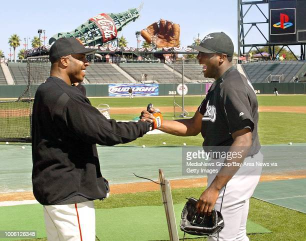 Nick Lammers/staff 9/29/03 tribune News#13Giants Barry Bonds and Marlin's Dontrelle Willis of Alameda joke with each other during the afternoon...