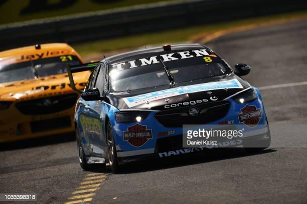 Nick Percat drives the Brad Jones Racing Commodore ZB during qualifying for the Supercars Sandown 500 at Sandown International Motor Raceway on...