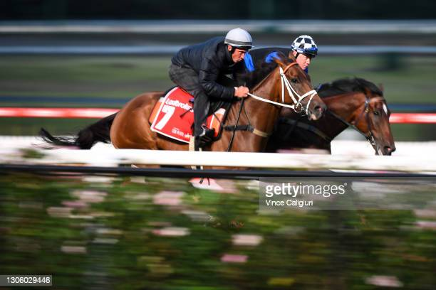 Nick Ryan riding Mugatoo during a trackwork session ahead of the All Star Mile, at Moonee Valley Racecourse on March 09, 2021 in Melbourne, Australia.