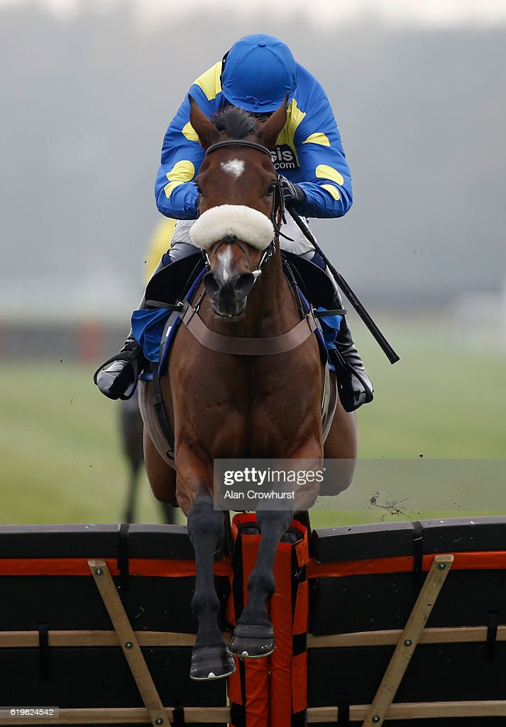 Nick Scholfield riding Bistouri d'Honore clear the last to win The Bathwick Tyres 'National Hunt' Novices' Hurdle Race at Exeter Racecourse on November 1, 2016 in Exeter, England.