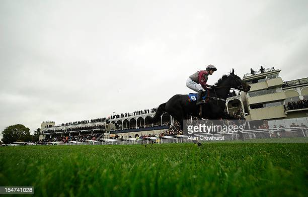 Nick Scholfield riding On The Bridge to win The Vera Davies Cup at Ludlow racecourse on October 25 2012 in Ludlow England