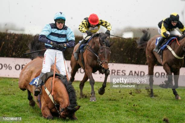 Nick Scholfield riding Templier fall at the last during The John Honeyball Memorial Novices' Handicap Chase at Wincanton Racecourse on January 30...
