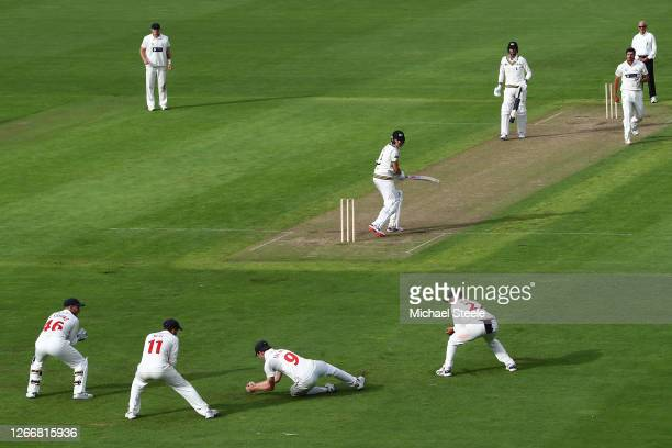 Nick Selman of Glamorgan takes a catch at 2nd slip off the bowling of Marchant de Lange to claim the wicket of Josh Shaw of Gloucestershire during...