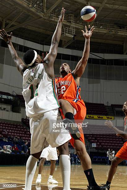 Nick Sheppard of Columbus RiverDragons shoots against Hiram Fuller of the Charleston Lowgators at the North Charleston Civic Center February 20, 2004...