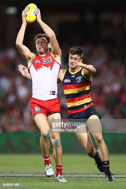 Nick Smith of the Swans contests the ball Riley Knight of the Crows during the round five AFL match between the Sydney Swans and the Adelaide Crows...
