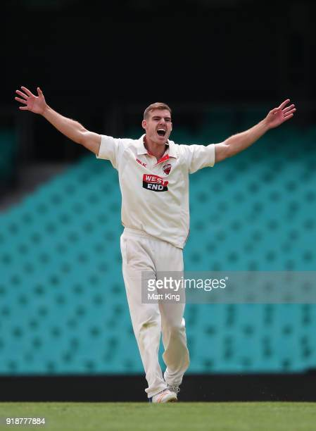 Nick Winter of the Redbacks celebrates taking the wicket of Ed Cowan of the Blues during day one of the Sheffield Shield match between New South...