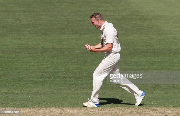 Nick Winter of the Redbacks celebrates taking the wicket of Moises Henriques of the Blues during day one of the Sheffield Shield match between New...