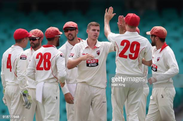 Nick Winter of the Redbacks celebrates with team mates after taking the wicket of Ed Cowan of the Blues during day one of the Sheffield Shield match...