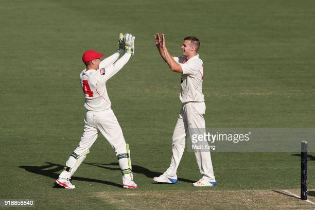 Nick Winter of the Redbacks celebrates with team mates after taking the wicket of Kurtis Patterson of the Blues during day one of the Sheffield...