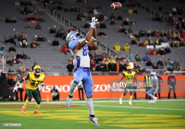 Nick Truesdell of the Salt Lake Stallions catches a touchdown pass during the second half of the Alliance of American Football game against the...