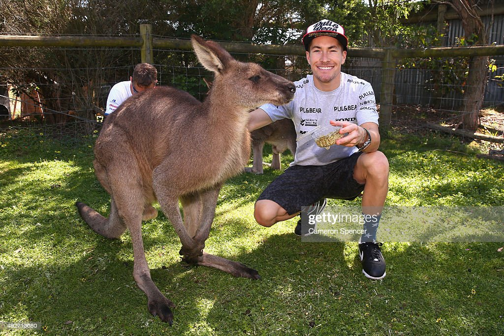 Nicky Hayden of Aspar MotoGP team poses with a Kangaroo at Maru Koala & Animal Park ahead of the 2015 MotoGP of Australia at Phillip Island Grand Prix Circuit on October 15, 2015 in Phillip Island, Australia.