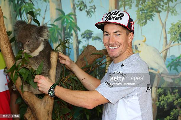 Nicky Hayden of USA and Drive M7 Aspar poses with a koala bear at an animal park ahead of the 2015 MotoGP of Australia at Phillip Island Grand Prix...