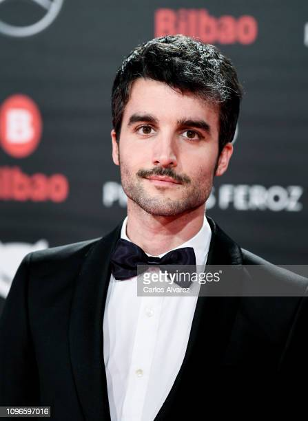 Nico Casal attends during Feroz awards red carpet on January 19 2019 in Bilbao Spain