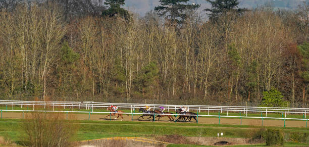 GBR: Lingfield Races