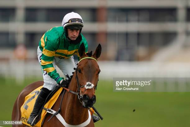 Nico de Boinville riding Champ make their way to the start for The Betfair Game Spirit Chase at Newbury Racecourse on February 21, 2021 in Newbury,...
