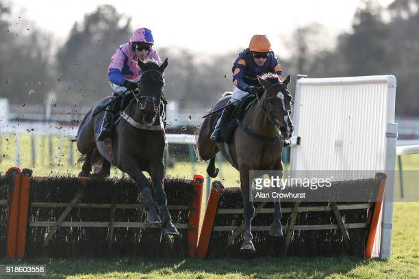 Nico de Boinville riding Jaisalmer clear the last to win The Lorrain Stephen O'Mahoney Celebrating 10 Years Novices' Hurdle Race at Fontwell Park...