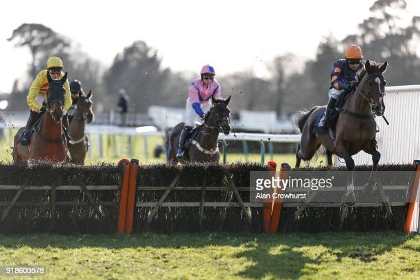 Nico de Boinville riding Jaisalmer on their way to winning The Lorrain Stephen O'Mahoney Celebrating 10 Years Novices' Hurdle Race at Fontwell Park...