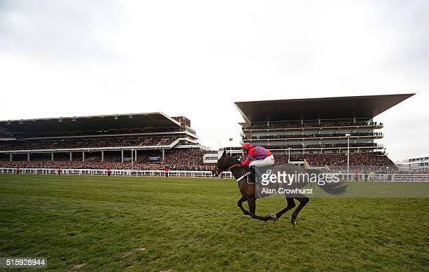Nico de Boinville riding Sprinter Sacre sprint up the hill to win The Betway Queen Mother Champion Steeple Chase at Cheltenham racecourse on March 16...