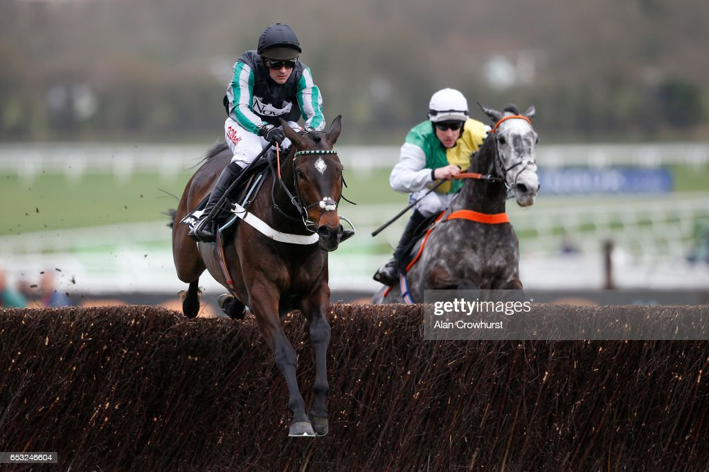 Cheltenham Festival - Champion Day : News Photo
