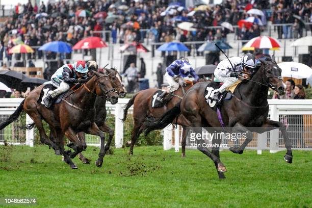 Nicola Currie riding Raising Sand win The Bet With Ascot Challenge Cup at Ascot Racecourse on October 6 2018 in Ascot United Kingdom