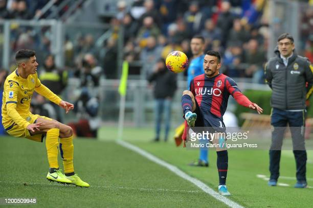 Nicola Sansone of Bologna FC in action during the Serie A match between Bologna FC and Hellas Verona at Stadio Renato Dall'Ara on January 19, 2020 in...