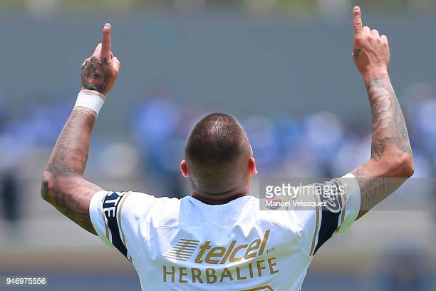 Nicolas Castillo of Pumas celebrates after scoring a goal during the 15th round match between Pumas UNAM and Puebla as part of the Torneo Clausura...
