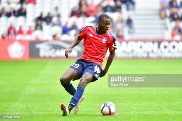 Nicolas Pepe of Lille during the Ligue 1 match between Lille and Guingamp on August 26 2018 in Lille France