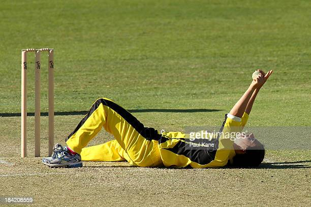 Nicole Bolton of the Fury celebrates dimissing Kate Waetford of the Meteors during the WNCL match between the Western Australia Fury and the ACT...