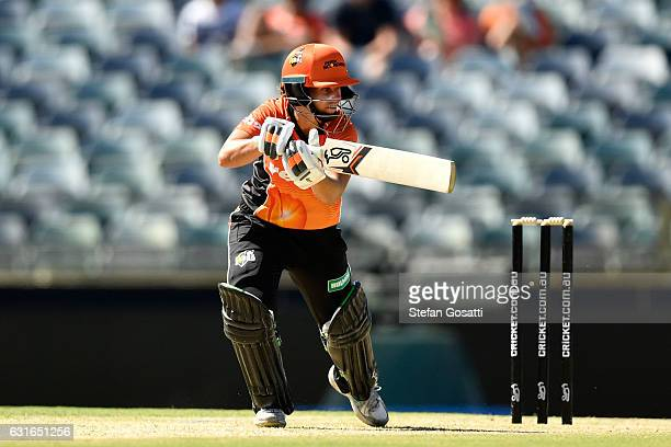 Nicole Bolton of the Scorchers bats during the Women's Big Bash League match between the Perth Scorchers and the Adelaide Strikers at WACA on January...